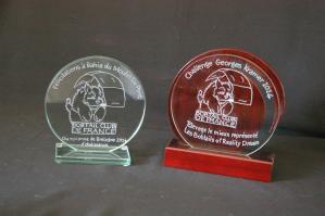 Ensemble de trophees en verre graves et personnalises du logo de votre club