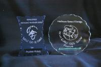 Trophées en verre gravés pour un club de Bobtail